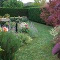 Jardin juin 2009