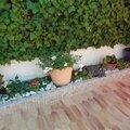 une grande jardinière fleurie toute l'année.