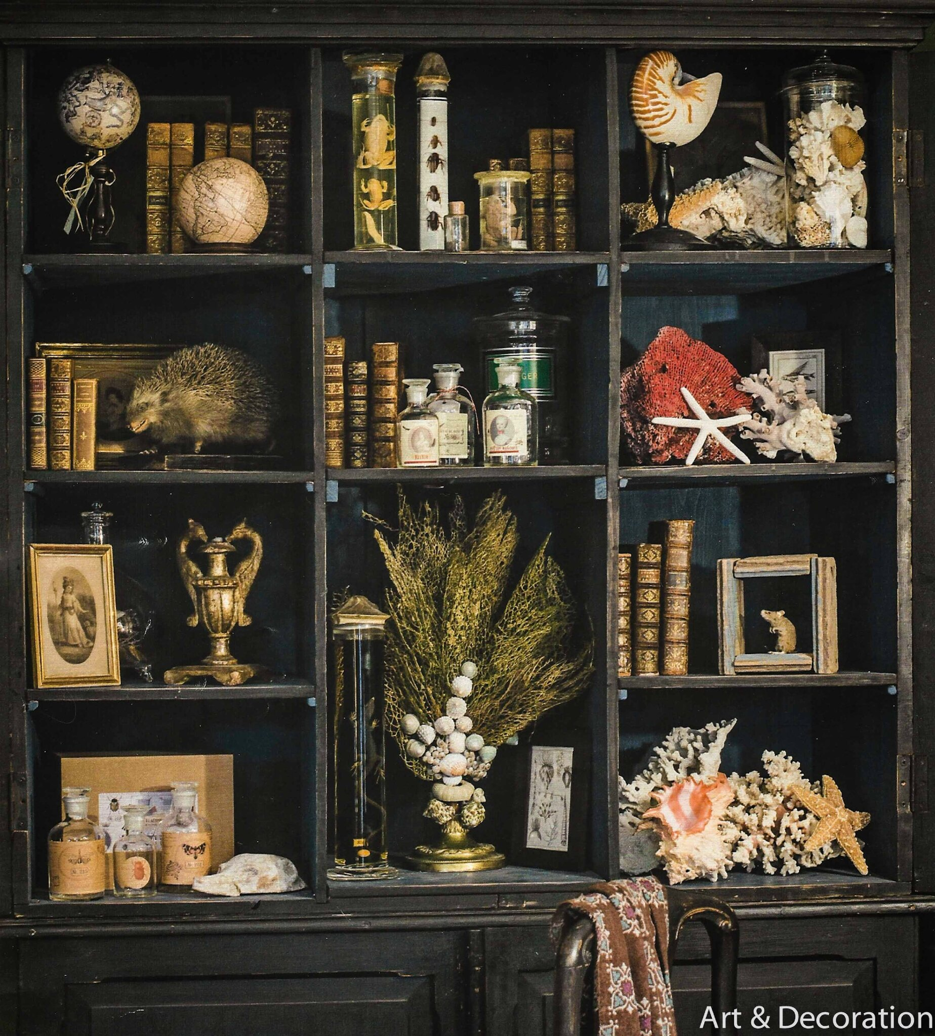 le cabinet de curiosit s manouedith et ses passions. Black Bedroom Furniture Sets. Home Design Ideas