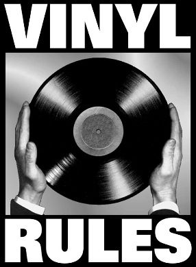 vinyl rules image
