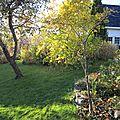 De retour au jardin - hjemme i hagen igjen