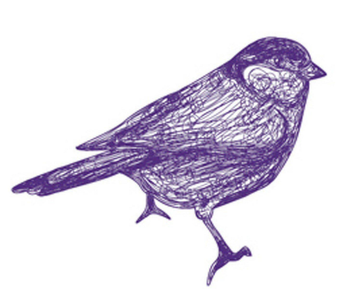 oiseau (Copier)