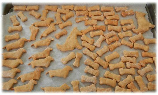 Top Recette de biscuit pour chien et chat - Mystere Naturel PX64