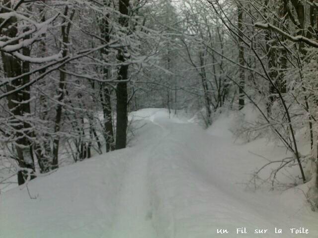 neige 1248