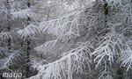 hiverimaginaire3