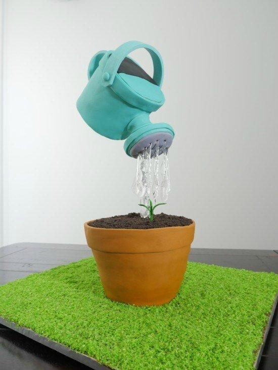 watering-can-cake-optical-illusion-ann-reardon-550x733