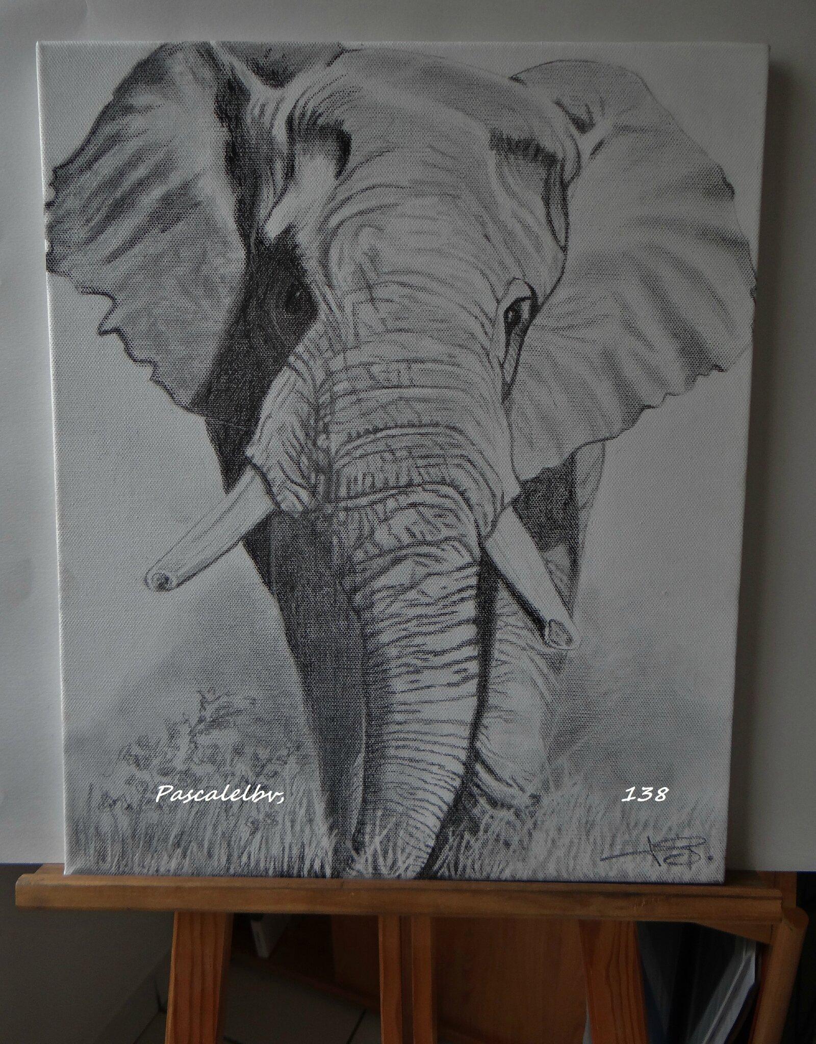 138 L'éléphant sur toile 38X46 - DISPONIBLE