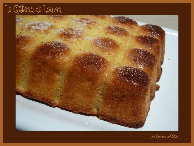 gateau de louisa2