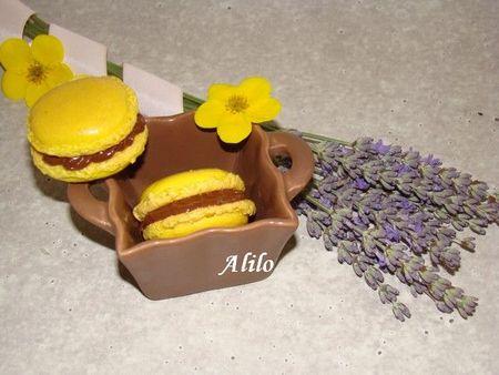 macarons 009