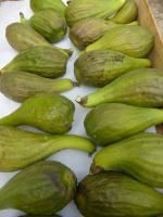 28-figues (7)