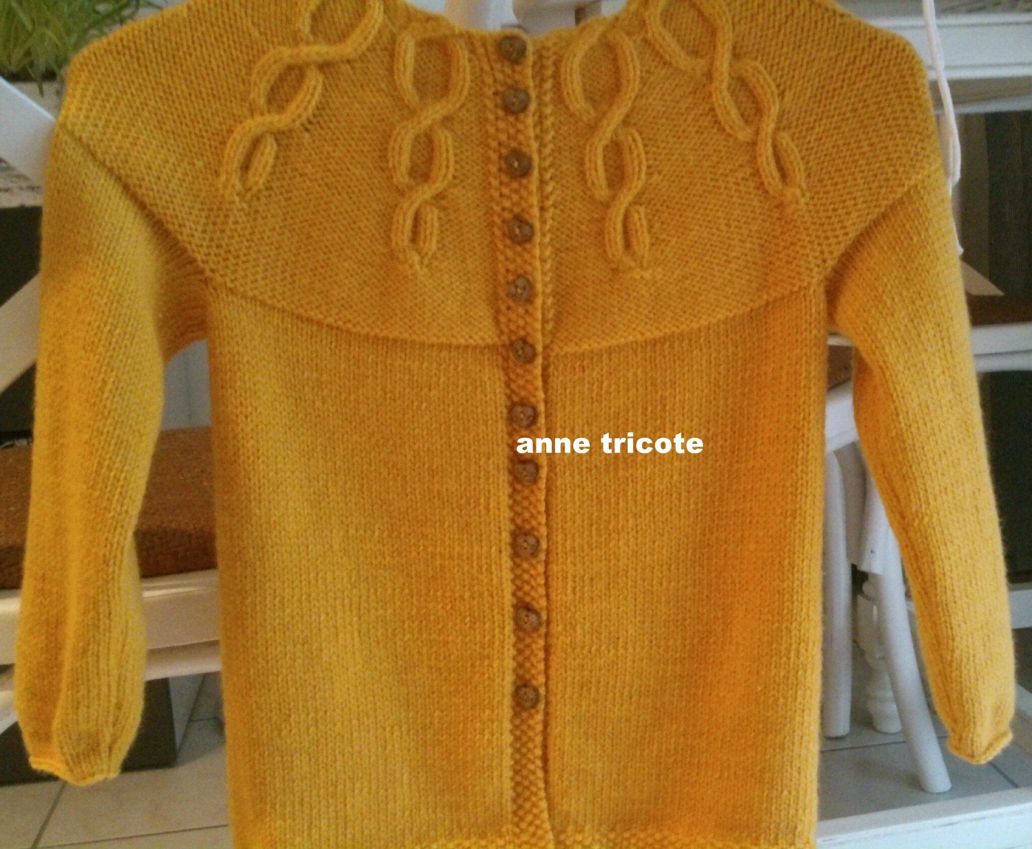 gilet miss Korrigan 6A Partner 3,5 coloris jaune (9)
