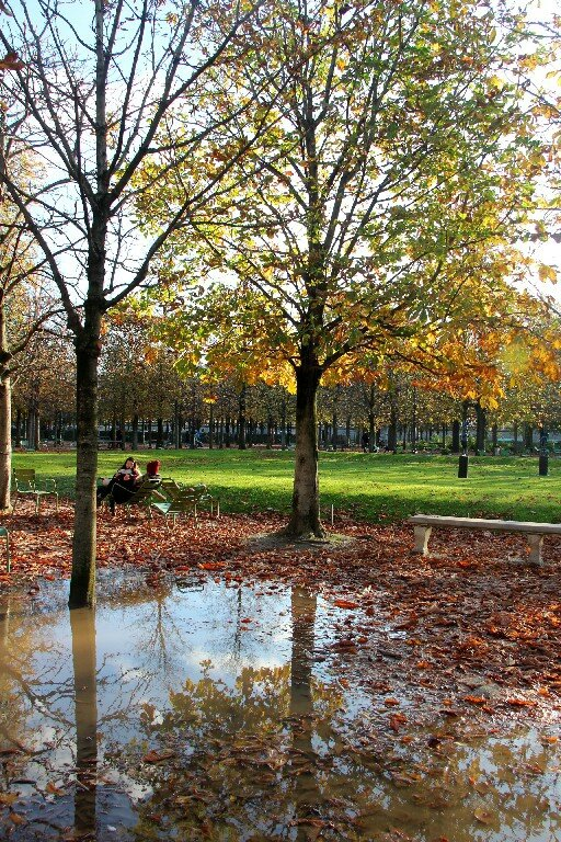 6-Reflets, jardin des Tuileries_7520