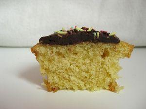 Cupcake_003