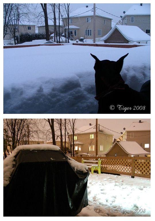 premiere neige 2007-2008