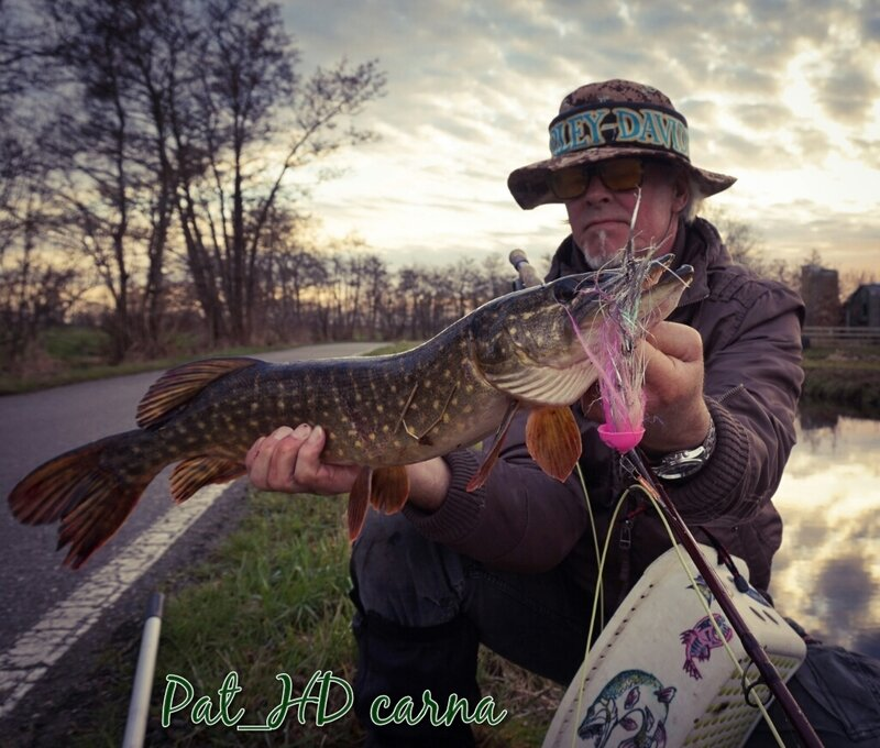 170310_p_che_brochet_06_pike_fishing