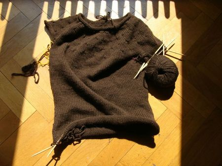 Simplest sweater Carpe Diem
