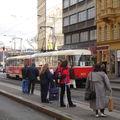 Tramways : Attente des passagers sur le quai