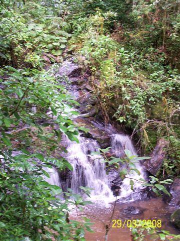 (F60)- Une sortie en forêt: la cascade sacrée