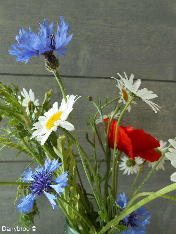 fleurs du jardin et fleurs des champs danybrod. Black Bedroom Furniture Sets. Home Design Ideas