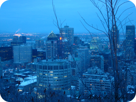 vue_mont_royal