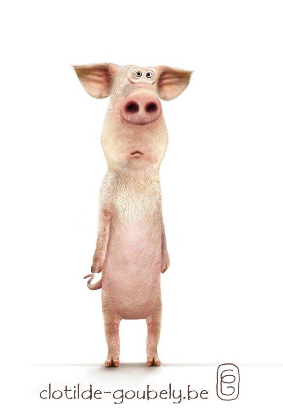 cochon-couleur-def