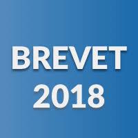 """Résultat de recherche d'images pour """"image dnb 2018"""""""