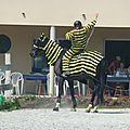 Jeux équestres manchots 2013 (195)