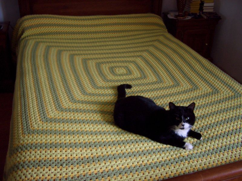 plaid granny g ant au fil de val. Black Bedroom Furniture Sets. Home Design Ideas