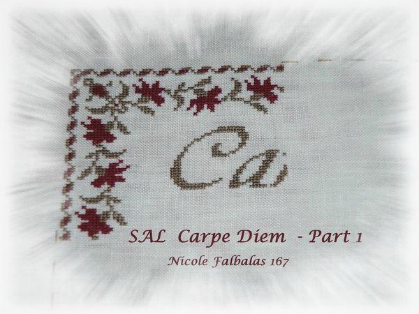 SAL CARPE DIEM 005