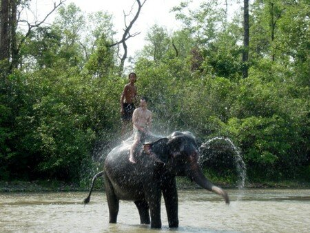 Bath_of_Elephant