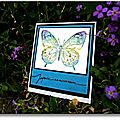 carte papillon aquarelle