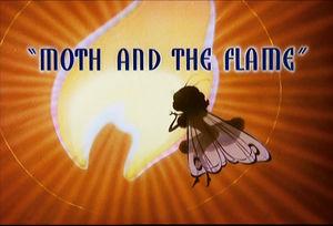 Moth_Flame1