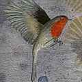 Toile rouge-gorge et glycine détail de l'oiseau