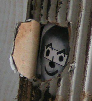 tête fenêtre