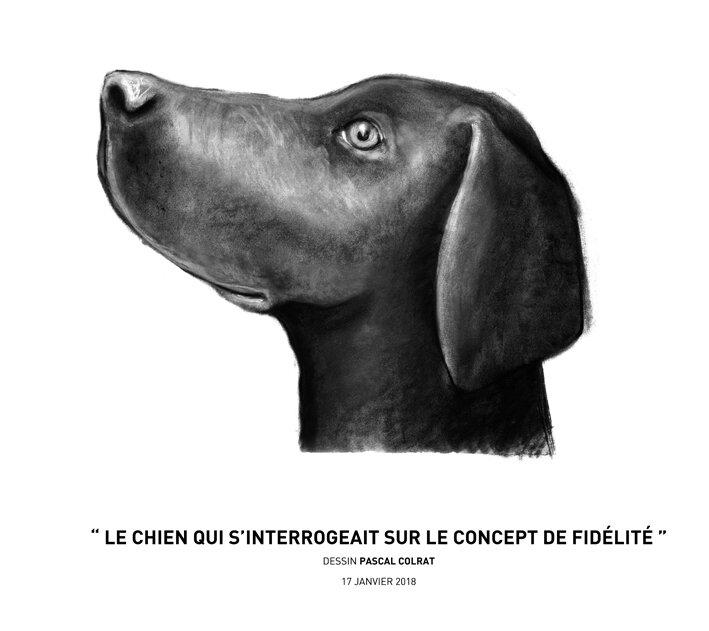 __le_chien_qui_s_interrogeait_sur_le_concept_de_fide_lite___