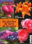 Plantes_terre_de_bruyere