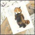 00-Couv petit panda