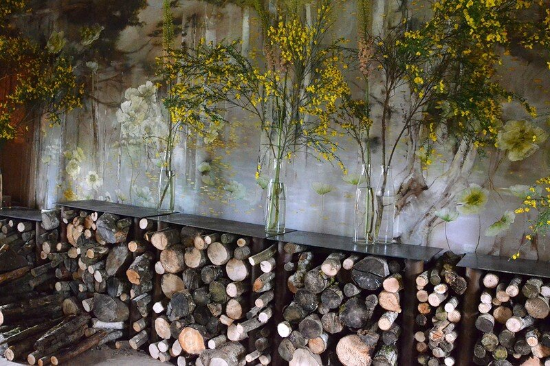Claire Basler 004-001
