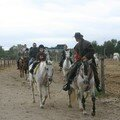Camargue ADEPA 036