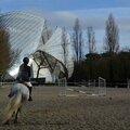 Société d'equitation de paris