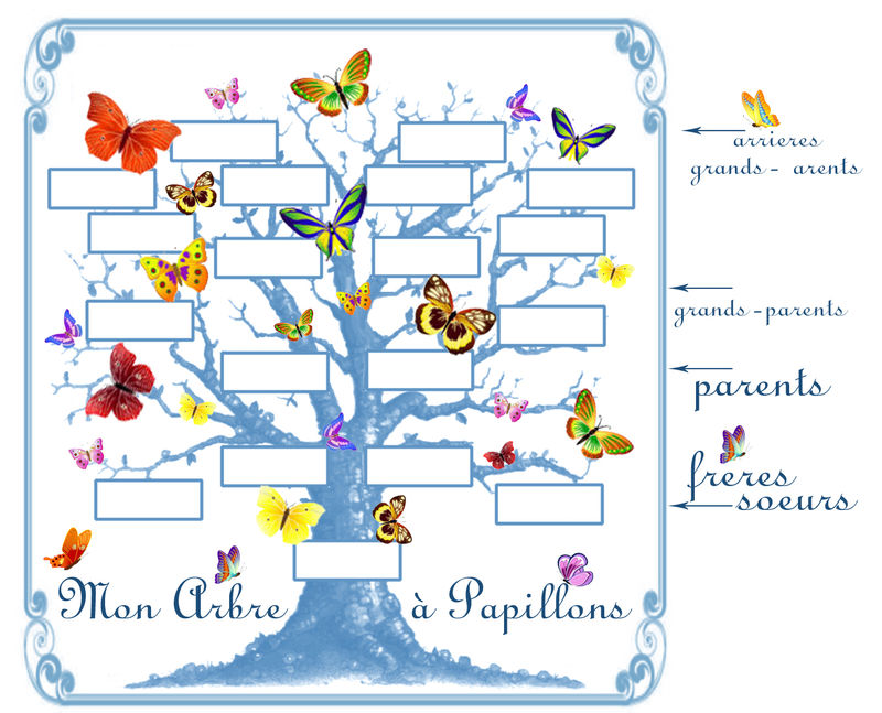 Grade 2 changing family and community traditions grade - Arbre genealogique avec photo ...