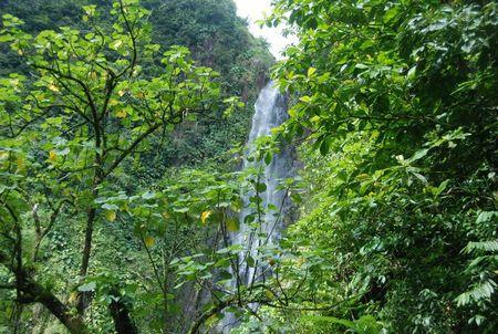 La Guadeloupe 261