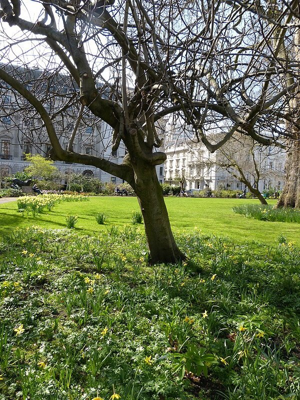 st james square4
