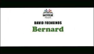 david_foenkinos_bernard