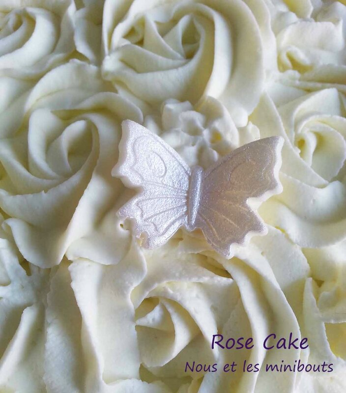 rose cake chantilly papillon