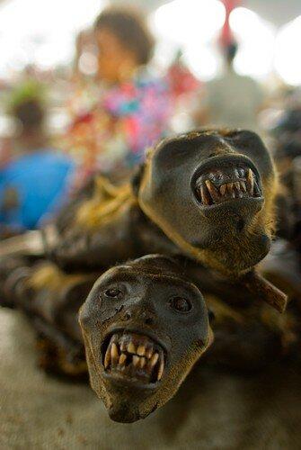 Kinshasa: guenons fumées