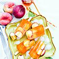 Sucettes glacées au rooibos et à la pêche (popsicles)