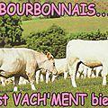 Le Bourbonnais (03)