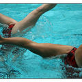 natation synchro 425 copie