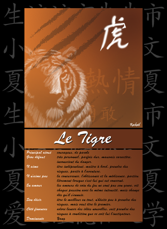 tigre_blanc2_copie
